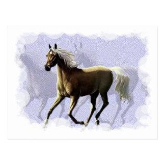 Sombra del caballo postales
