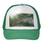 Sombra del hallazgo en el gorra de la Florida