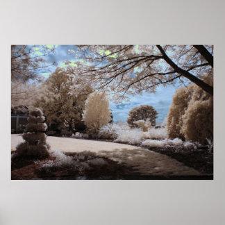 Sombra del jardín póster