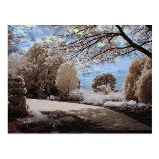 Sombra del jardín tarjeta postal