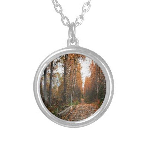Sombra del otoño del árbol grímpola