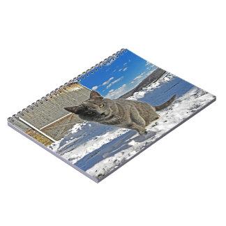 Sombra en cuaderno del invierno