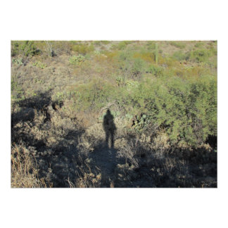 Sombra humana en el poster del desierto