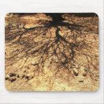 Sombra Mousepad del árbol Tapete De Ratones