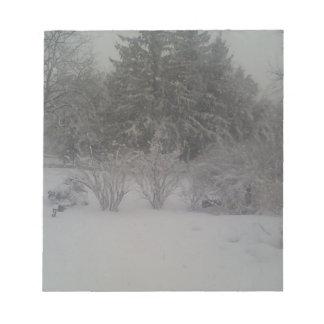 Sombra nebulosa del invierno bloc de notas
