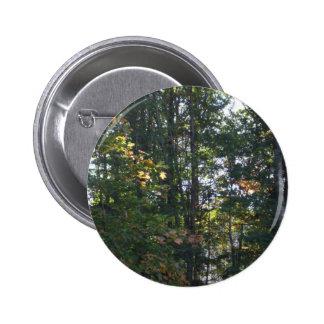 Sombras del otoño pin redondo de 2 pulgadas