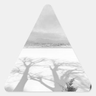 Sombras grandes de lanzamiento blancos y negros pegatinas de triangulo personalizadas