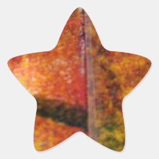 Sombras y líneas de los colores de los ricos pegatina en forma de estrella