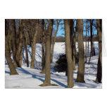 sombras y nieve del árbol tarjeta de felicitación