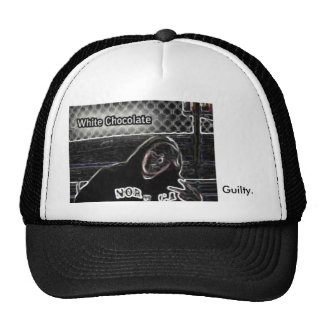 sombrero culpable gorra