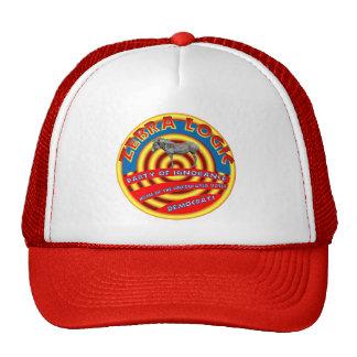 Sombrero del fiesta de Demócrata Gorras De Camionero