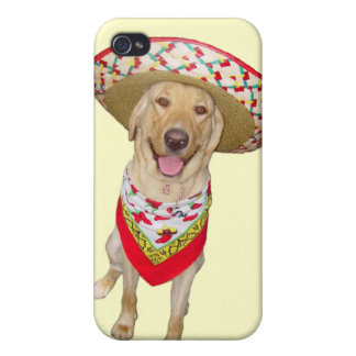 Sombrero Lab Cases For iPhone 4
