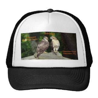 Sombrero que muestra los halcones adolescentes hac gorras