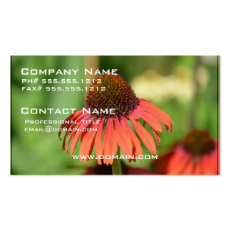 Sombrero Salsa Red Coneflower Double-Sided Standard Business Cards (Pack Of 100)