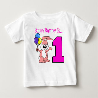 Some Bunny Is One Baby T-Shirt