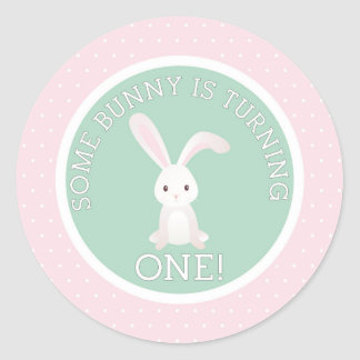 Some Bunny is Turning one! Round Sticker