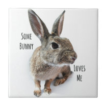 Some Bunny Loves Me Collection Rabbit Easter Tile