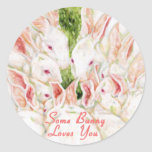 Some Bunny Loves You - White Rabbits Round Stickers