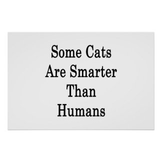 Some Cats Are Smarter Than Humans Poster