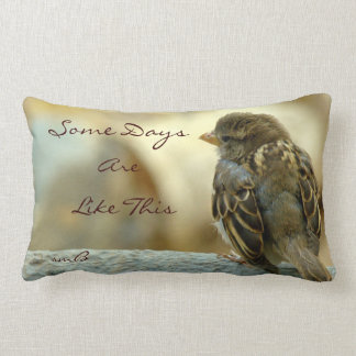 Some Days Are Like This, Designer Pillow