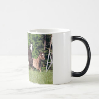Some Horses In Green Grass Magic Mug