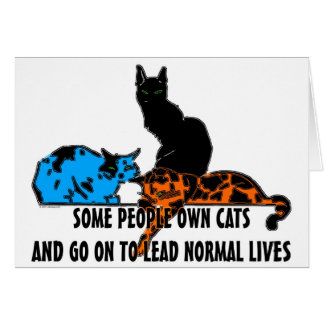 Some People Own Cats... Card