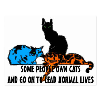 Some People Own Cats... Postcard