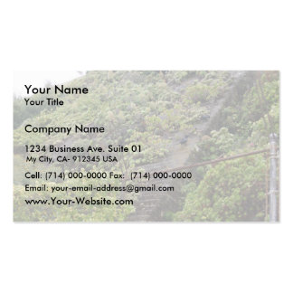 Some Plant-Overgrown Steps At Alcatraz Prison Park Double-Sided Standard Business Cards (Pack Of 100)