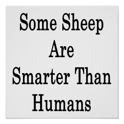 Some Sheep Are Smarter Than Humans Posters