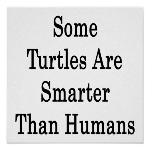 Some Turtles Are Smarter Than Humans Poster