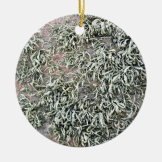 Some weird lichens on a rock Double-Sided ceramic round christmas ornament