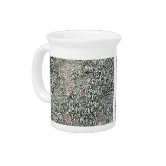 Some weird lichens on a rock drink pitcher