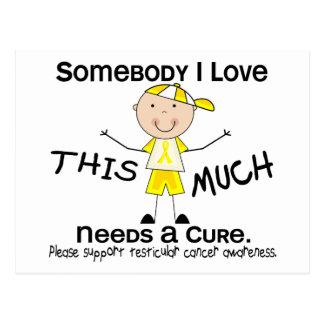 Somebody I Love - Testicular Cancer (Boy) Postcard