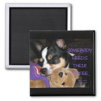 Somebody Needs Coffee Chihuahua Dog 2 Inch Square Magnet