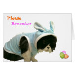 Somebunny - Happy Easter Card