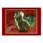 ¡Somebunny le ama! Fotografía del conejito Felicitaciones