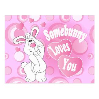 Somebunny Love You Bunny Postcard