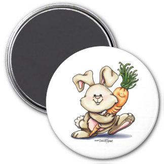 Somebunny loves me button magnet