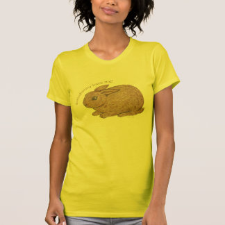 Somebunny Loves Me ladies reversible sheer top Tee Shirt