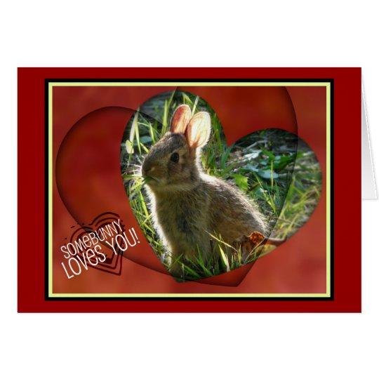 Somebunny Loves You! Bunny Photograph Card
