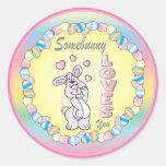 Somebunny Loves You Classic Round Sticker