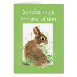 Somebunny que piensa en usted, conejo, conejito tarjeton