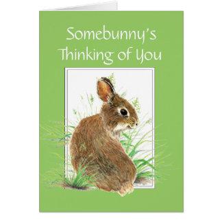 Somebunny que piensa en usted, conejo, conejito tarjeta pequeña