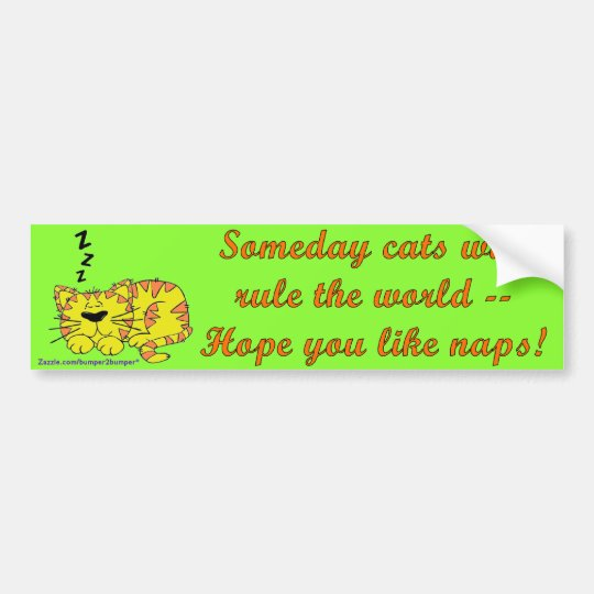 Someday Cats Bumper Sticker