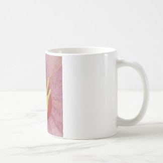Someone in USA Digs me.jpg Coffee Mug