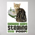 Someone Keeps Stealing My Poop cat lovers poster