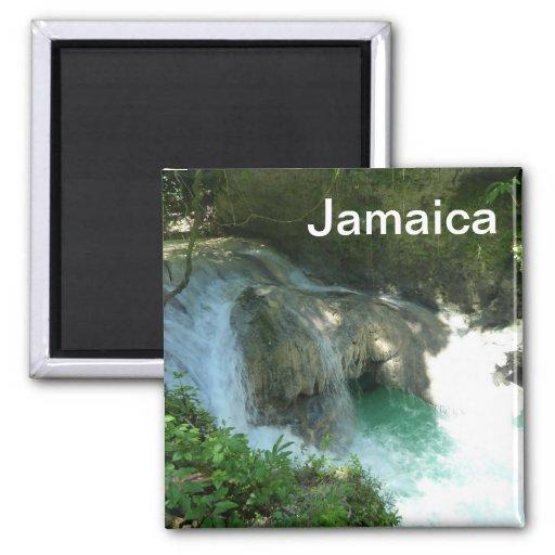 Somerset cae cascada del imán de la foto de Jamaic