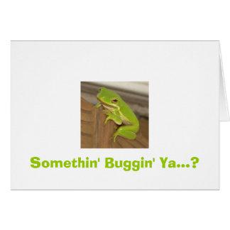 Somethin' Buggin' Ya...?  TreeFrog Card