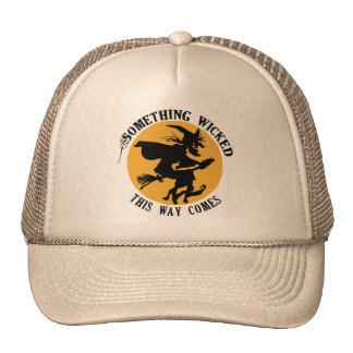 Something Wicked This Way Comes Wicked Witch Mesh Hat