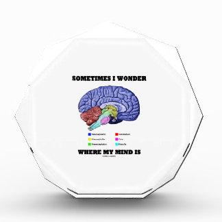 Sometimes I Wonder Where My Mind Is (Brain Humor) Award